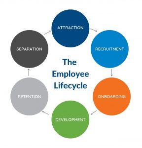 The Employee Lifecycle crop noborder_Consulting_Workforce Development_Literacy_Gap Years